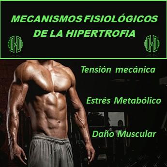 MECANISMOS FISIOLÓGICOS PARA LA HIPERTROFIA