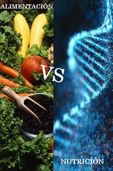 ALIMENTACIÓN VS NUTRICIÓN